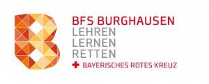 BURG_120927_BFS_Logo_Vektor_weiss
